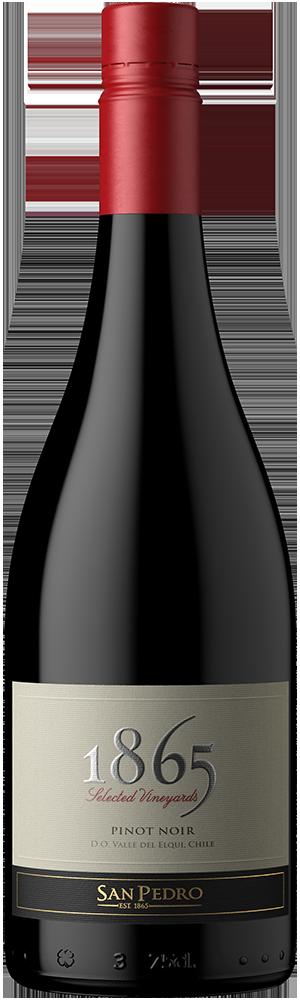 Bottle Pic